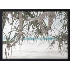 Pandanus II Framed Print