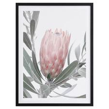 Natural Beauty I Framed Printed Wall Art