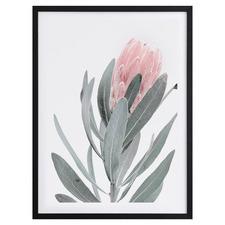 Natural Beauty II Framed Printed Wall Art