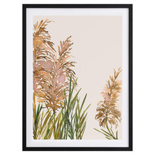 Fields Of Gold II Framed Printed Wall Art