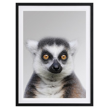Julien Framed Printed Wall Art