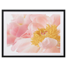 Spring Dream Framed Printed Wall Art