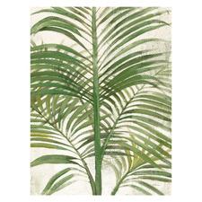 Areca Palm II Canvas Wall Art
