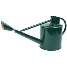 9L Green Long Reach Watering Can