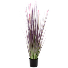 90cm Potted Faux Purple Dogtail Grass