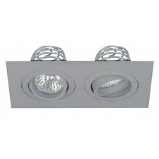 Two Light Premium Architectural Downlight