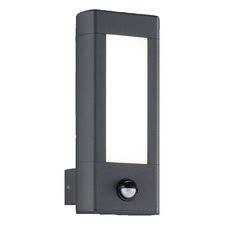 Amun LED Outdoor Sensor Wall Light