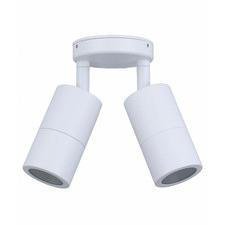 Double GU10 Aluminium Adjustable Outdoor Ceiling Light