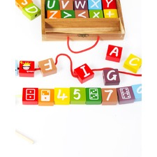 Alphabet Case Block Set