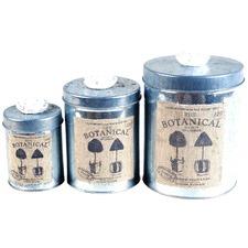 Set of 3 Flower Tin Pots (Set of 3)