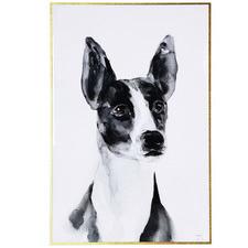 Terrier Dog Framed Canvas Wall Art