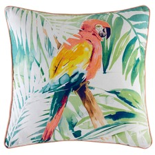 Cheechy Outdoor Cushion