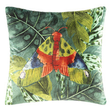 Polilla Velvet Cushion