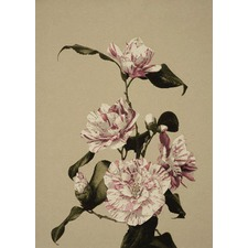Geisha Camelia Courtesan Tapestry