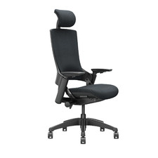 Reiner Upholstered Ergonomic Office Chair