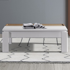 Levesque Coffee Table
