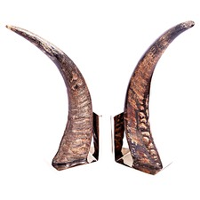Siwana Bookends (Set of 2)