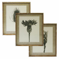Meadows Framed Printed Wall Art Triptych