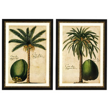 Vintage Palms Framed Printed Wall Art Diptych