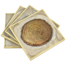 Natural & Brown Back To Nature Coasters (Set of 4)