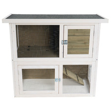 White Cavy Hutch