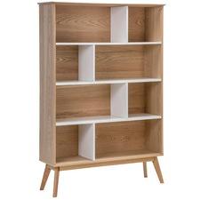 Barney Bookshelf