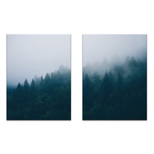 2 Piece Mountain Forrest Printed Wall Art Set