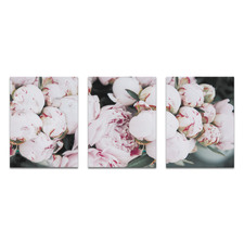 Pale Poise Printed Wall Art Triptych