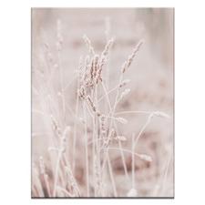Dry Grass II Printed Wall Art