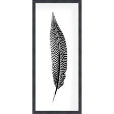 Feather III Framed Print