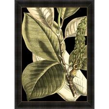 Tranquil Tropical Leaves II Framed Print