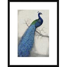 Peacock Blue I Framed Print