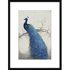 Peacock Blue II Framed Print