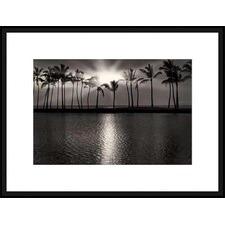 Summer Breezes III Framed Print