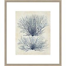 Indigo Blue Seaweed 1a Framed Print