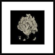 Black & Tan Coral IV Framed Print