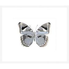 Butterfly in Grey I Framed Print