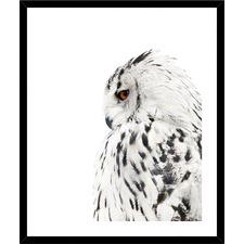 Big Grey Owl Framed Print