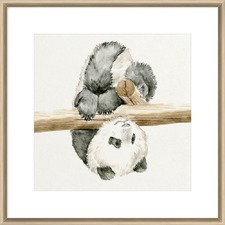 Baby Panda II Framed Print