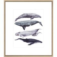 Whale Stack I Framed Print