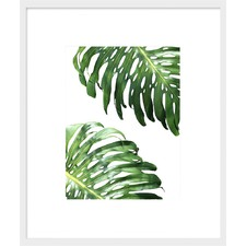 Double Leaf Monstera Framed Print