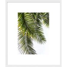Palm Leaves Framed Print