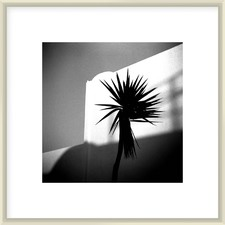 Ola Lee Frost Framed Printed Wall Art