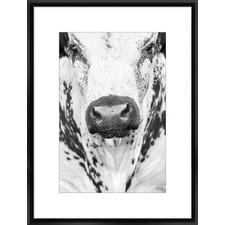 Nosey Framed Print