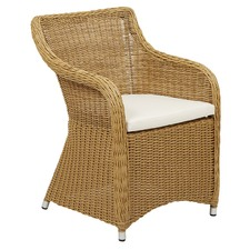Brown Eleanor PE Rattan Armchair (Set of 2)