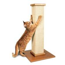 Ultimate Scratching Post
