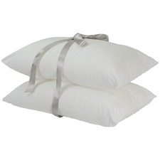 Everyday Regular Pillow (Set of 2)