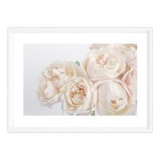 La Belle Rose Framed Printed Wall Art