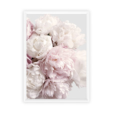 Peony Blush Framed Printed Wall Art