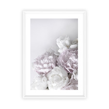 Peony Love Framed Printed Wall Art